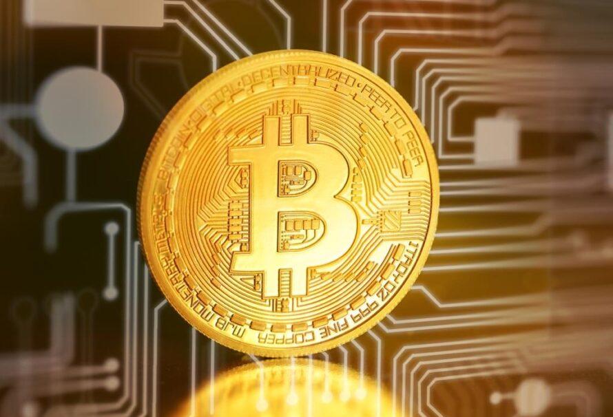 Bitcoin se stává novým standardem. Jak si vedou ostatní kryptoměny?