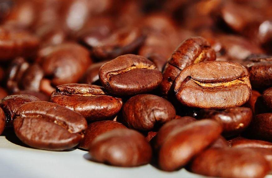 Kávu známe přes 1500 let